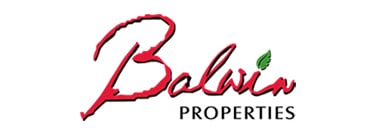 Balwin shares