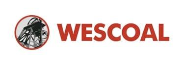 Wescoal shares