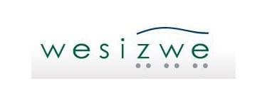 Wesizwe shares
